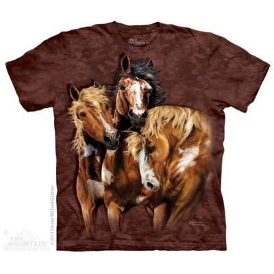Find 8 Horses Animals T Shirt