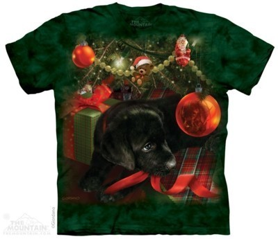 Puppy Reflections T Shirt